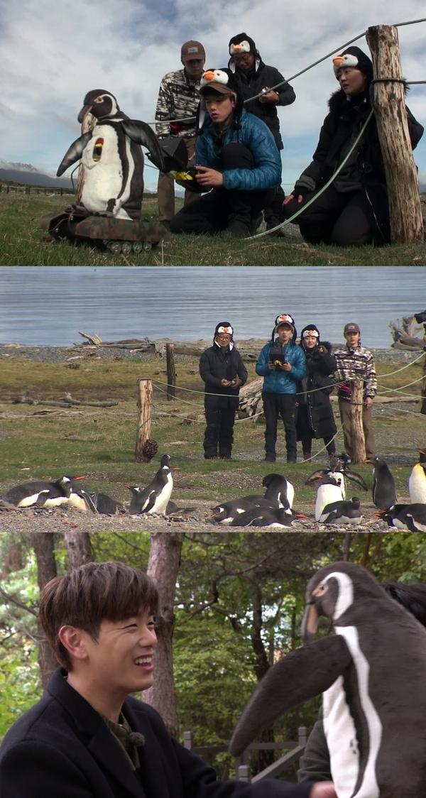사진제공 : KBS 2TV '은밀하고 위대한 동물의 사생활'